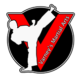 We are a professional full time academy based in South Wigston, Leicester that teaches the positive benifits of martial arts training to both children and adults alike.