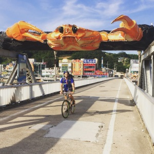 There must be ten towns along this coastline which claim to be Korea's Crab Capital, however this one really went the extra mile. I've never seen so many giant crabs in one place…a big statement for anyone who knows the Korean coastline well.