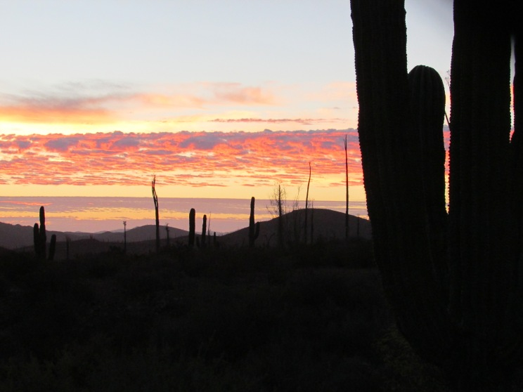 Sunrise in the desert