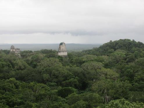 Majestic Tikal