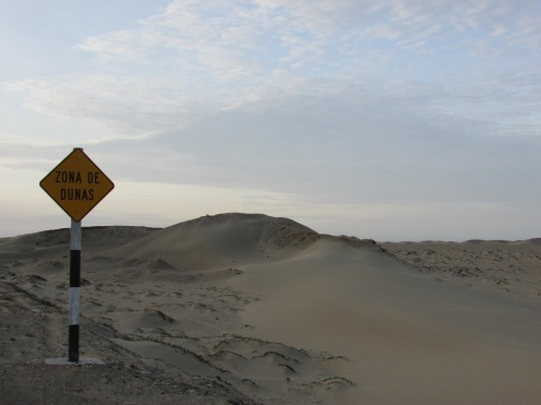 Peru has the biggest sand dunes in the world (although this is just a baby one)