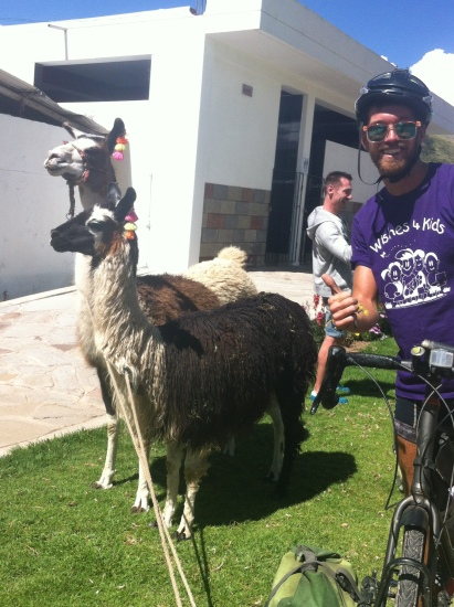 Llama selfie (attempted)
