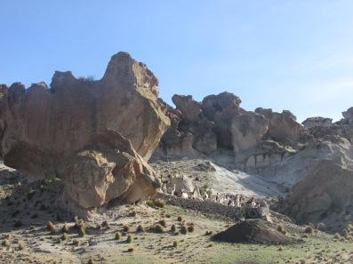 Llama house