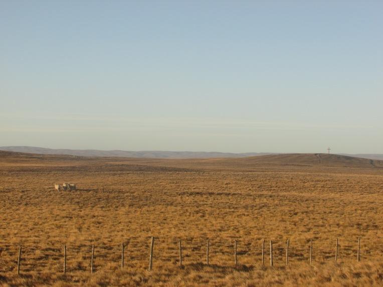 The desolate pampas